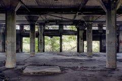 Покинутый вокзал - буйвол, Нью-Йорк Стоковые Фотографии RF