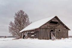 Покинутый дом амбара покрытый с снегом Стоковое Фото