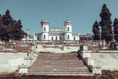 покинутый замок старый Стоковая Фотография