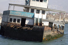 покинутый корабль моря lions01 Стоковые Фотографии RF