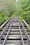 Покинутый мост железной дороги Стоковое Изображение