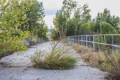 Покинутый мост Стоковое Фото