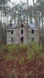 Покинутый дом в древесинах стоковые изображения rf
