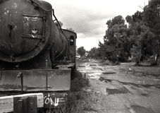 Покинутый поезд пара Стоковые Фотографии RF