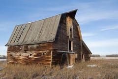 Покинутый старый амбар в зиме Стоковая Фотография RF
