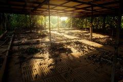 Покинутый старый дом Стоковые Фотографии RF