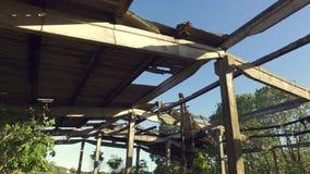 покинутый строя интерьер сломленная крыша съемка steadicam сток-видео