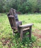 Покинутый трон Стоковое Фото
