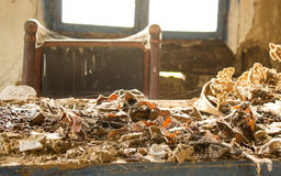 9 покинули различное сделанное hdr выдержек старой комнатой фото Стоковое Изображение RF