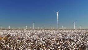 Поколение энергии ветра поля фермы энергии зеленого цвета плантации хлопка сток-видео