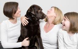 поколения семьи собаки их 3 Стоковое Изображение