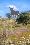 Покрасьте изображение афиши в форме быка в Испании Стоковые Изображения