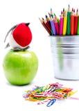 Покрасьте карандаши в держателях карандаша изолированных на белой предпосылке, sc Стоковые Фото