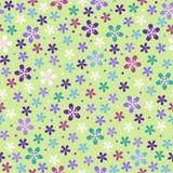 покрасьте картину цветка безшовным Стоковое фото RF