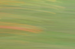 Покрасьте картину Стоковое Фото