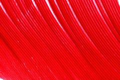 Покрасьте перо, деталь макроса каждой тонкой линии Стоковые Изображения