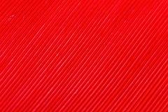 Покрасьте перо, деталь макроса каждой тонкой линии Стоковое Изображение RF