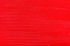 Покрасьте перо, деталь макроса каждой тонкой линии Стоковое Изображение