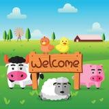 Покрасьте плоскую ферму утки курицы свиньи коров и овцы стоят в зеленом поле с радушной деревянной доской Стоковые Изображения
