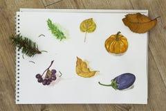 Покрасьте чертеж в альбоме Стоковое Фото