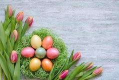 Покрасьте яичка в гнезде с тюльпанами на винтажной деревянной предпосылке Стоковые Фотографии RF