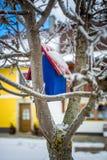 Покрашенная голубая смертная казнь через повешение дома птицы на дереве на снежном дне Стоковое Фото