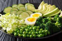 Покрашенная диета: зеленый салат свежего авокадоа, горохов, капусты, cucum Стоковая Фотография RF