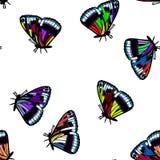 Покрашенная иллюстрация eps10 вектора картины бабочки безшовная Стоковые Фото