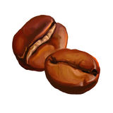 Покрашенная иллюстрация вектора кофейных зерен Стоковая Фотография