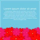 покрашенная карточка цветет приветствие Флористическое приглашение Весна иллюстрация штока