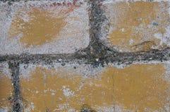 Покрашенная кирпичная стена Стоковая Фотография