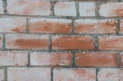 Покрашенная кирпичная стена Стоковое Фото