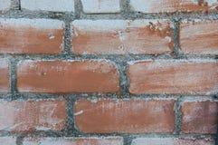 Покрашенная кирпичная стена Стоковые Изображения RF