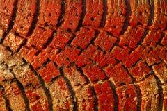 Покрашенная красным цветом предпосылка текстуры grunge автошины тележки Стоковые Изображения
