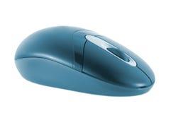 покрашенная мышь Стоковая Фотография