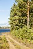 Покрашенная осенью дорога гравия Стоковые Изображения RF