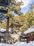 Покрашенная пагода в Nikko, Японии Стоковое Изображение RF