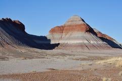 Покрашенная пустыня Аризоны, США Стоковая Фотография RF