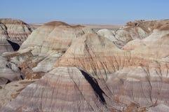 Покрашенная пустыня Аризоны, США Стоковые Изображения RF