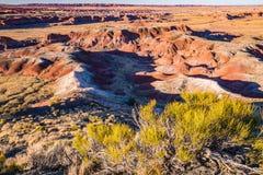 покрашенная пустыня Аризоны Стоковые Изображения RF
