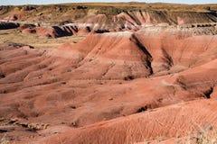 покрашенная пустыня Аризоны Стоковое Изображение RF