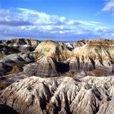 покрашенная пустыня Аризоны Стоковое фото RF