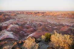 Покрашенная пустыня в свете последнего вечера Стоковые Изображения