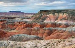 Покрашенная пустыня, окаменелый национальный парк леса Стоковое Фото