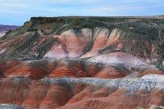 Покрашенная пустыня, окаменелый национальный парк леса Стоковая Фотография RF