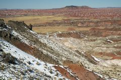 Покрашенная пустыня после снежности Стоковые Фото