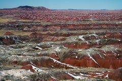 Покрашенная пустыня после снежности Стоковое Изображение RF