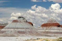 Покрашенная пустыня Стоковое Изображение RF