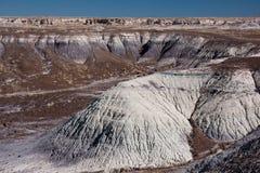 Покрашенная пустыня Стоковая Фотография