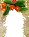 Покрашенная рамка овощей изолированная на белизне Стоковая Фотография